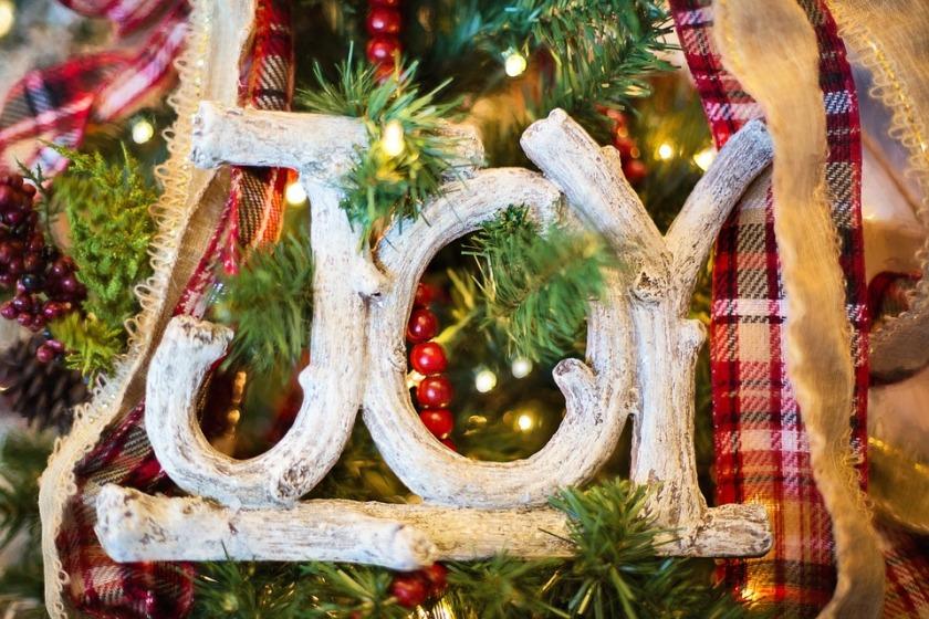 joy-1823939_960_720
